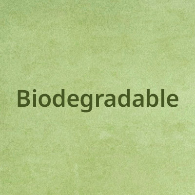 Biodegradable Disposables from Stephensons Catering Suppliers