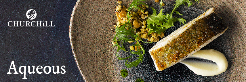 Churchill Aqueous Crockery from Stephensons Catering Suppliers